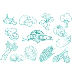 Outline hand drawn vegetable set flat style thin vector image
