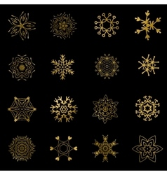 Set of beautiful different snowflakes isolated on vector image vector image