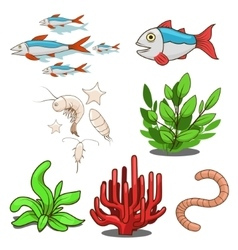 Water animals fish food vector