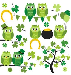 St Patrick Owls vector image
