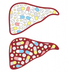 liver filled tablets vector image vector image