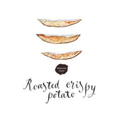 roasted crispy potato vector image
