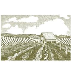 Woodcut Garden vector image vector image