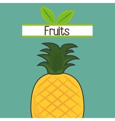 Fruit fresh food icon vector