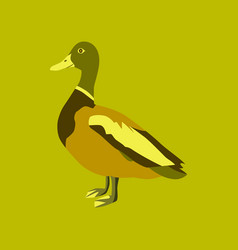 in flat style of wild duck vector image vector image