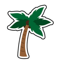 palm tree with coconuts icon image vector image