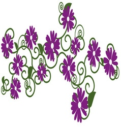 Purple daisies vector