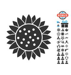 Sunflower flower icon with free bonus vector