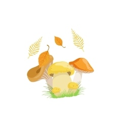 Three mushrooms as autumn attribute vector