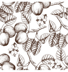 Seamless pattern with apple sketch vector