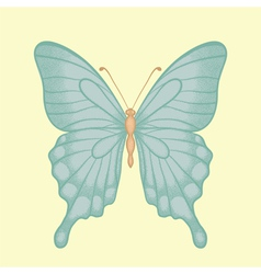 Butterfly in a hand-drawn graphic style in vintage vector