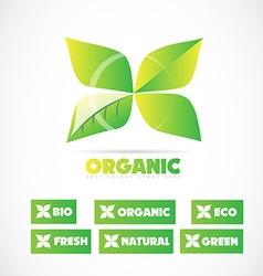 Organic bio product leaf logo vector image