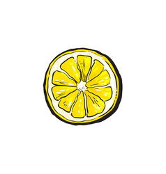 sketch cartoon colorful half of ripe lemon vector image