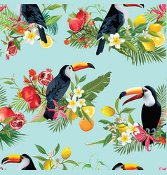tropical fruits flowers and birds background vector image