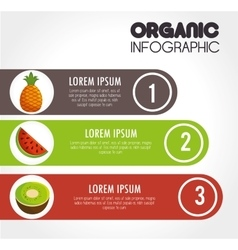 Organic infographic presentation icon vector