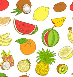 Outline hand drawn seamless colorfull fruit vector image vector image