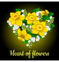 Heart from yellow daffodil stylish bouquet vector