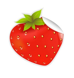 Label Strawberry vector image