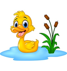Cartoon funny baby duck floats on water vector image