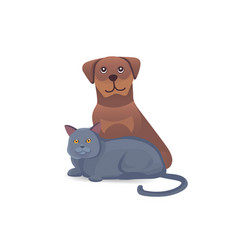 cat and dog together cute characters cartoon vector image