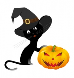 Halloween kitten vector image