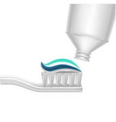 realistic detailed 3d toothpaste and toothbrush vector image vector image