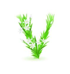 spring flowers alphabet v vector image