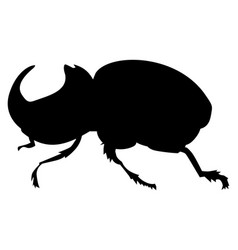 Rhinoceros beetle vector