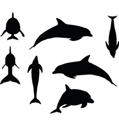 Dolphin silhouette vector