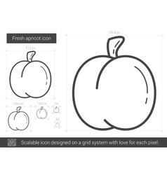 Fresh apricot line icon vector image