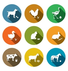 Pets flat icon collection vector