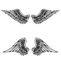 Vintage wings isolated on white background vector