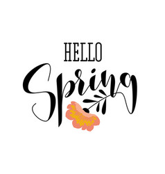 elegant hello spring lettering and pink flower vector image vector image