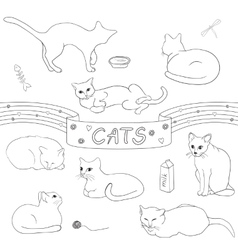 Contour cats set vector