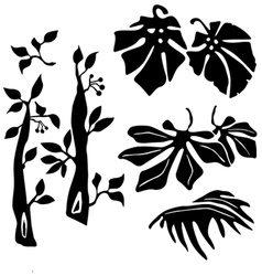 Tripical plants vector