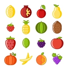 Fruit icons set flat design line art isolated vector image