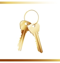 Golden bunch of keys vector image