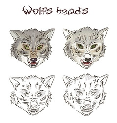 hand drawn wolves heads Two of them are painted vector image