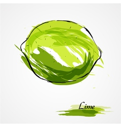 Lime whole vector