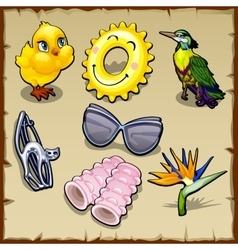 Set of summer birds and accessories for women vector image