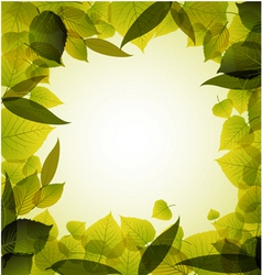 spring leafs abstract background vector image