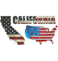 USA state of California on a brick wall vector image