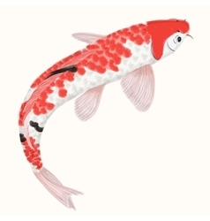 Koi rainbow carp hand drawn fish isolated vector