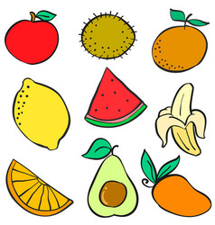 Doodle of fruit element colorful vector