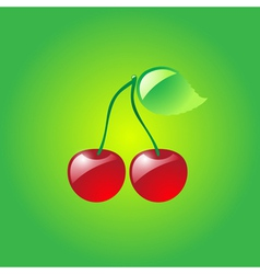 Glossy cherries vector