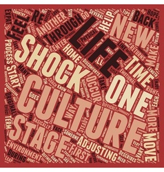 So what is culture shock text background wordcloud vector