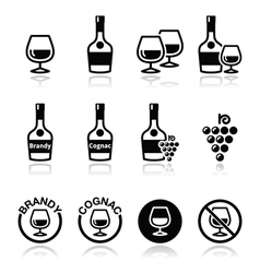 Brandy and cognac icons set vector