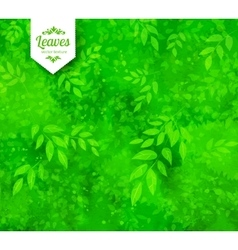 Green spring and summer background vector image
