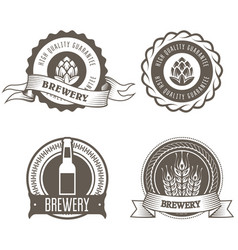 beer and brewery emblems with hop buds vector image