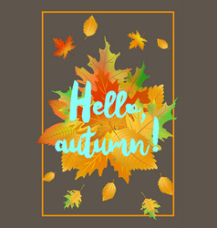 Hello autumn poster with fallen leaves vector